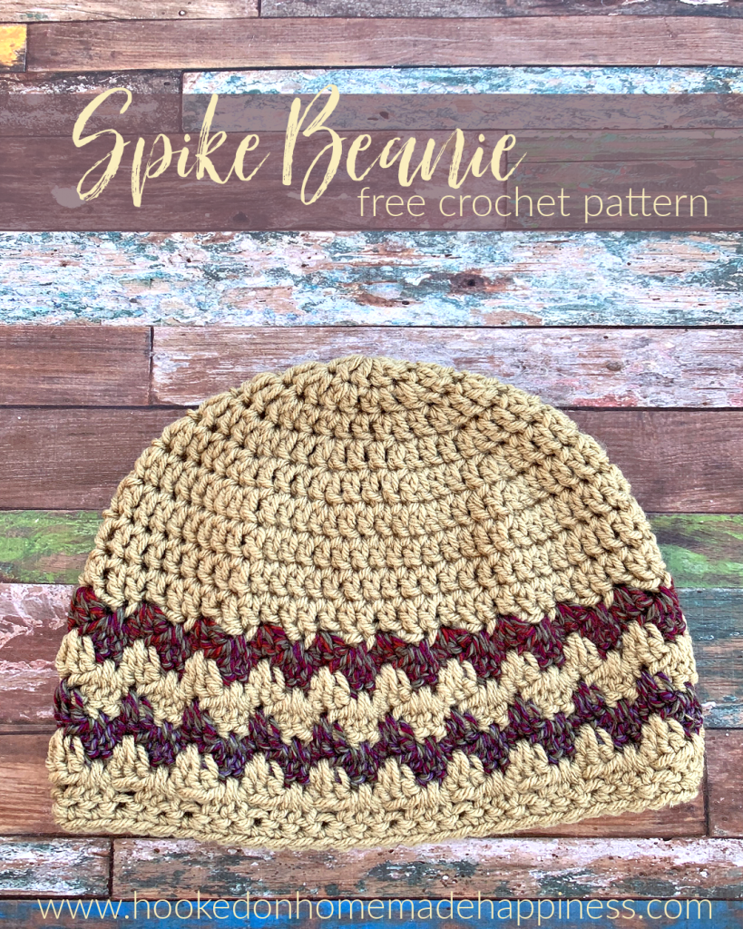 Spike Beanie Crochet Pattern - The Spike Beanie Crochet Pattern uses a fun variation of the classic granny stripe, the Granny Spike Stitch!